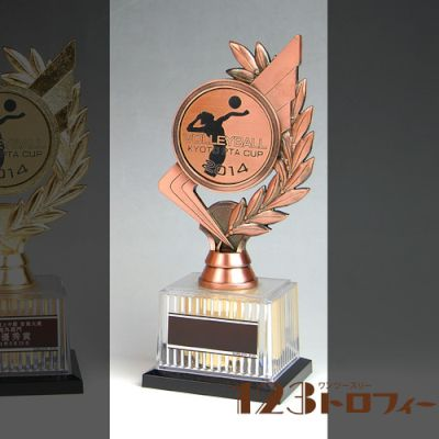 【オリジナルデザインができるトロフィー】 BRZ-2672 ★高さ210mm 《#B25》 ★プレート彫刻無料