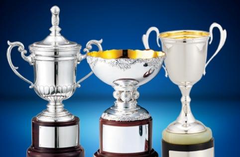 プレミアムシルバーカップ